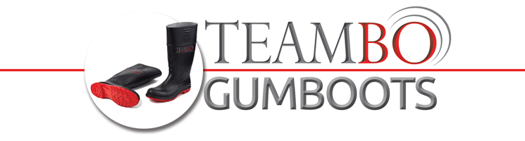 Teambo_gumbootsLOGO_745x200